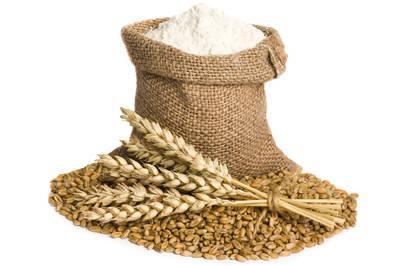 Komo Magic grain mill flour