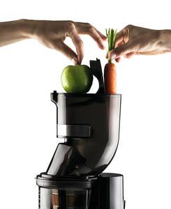 Sana Horeca EUJ-909 Commercial vertical juicer top unit