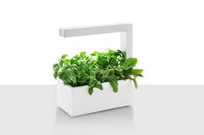 Hydroponická interiérová záhradka Tregren Herbie biela